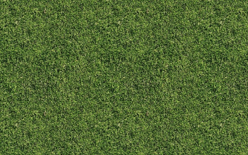Astro turf-Tampa Bay FL Outdoor Living & Designs-We offer Landscape Design, Outdoor Patios & Pergolas, Outdoor Living Spaces, Stonescapes, Residential & Commercial Landscaping, Irrigation Installation & Repairs, Drainage Systems, Landscape Lighting, Outdoor Living Spaces, Tree Service, Lawn Service, and more.
